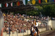 Disfida Equestre 2013